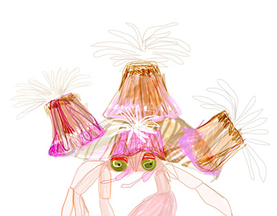 Jeweled anemone crab process