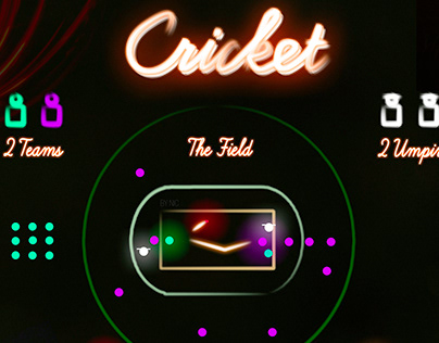 Cricket_lightpainting_infographic