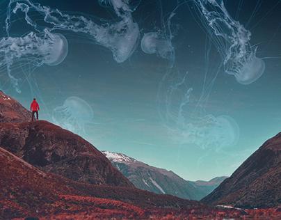 Daydreams - Wallpaper