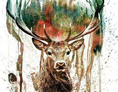 Deer IV