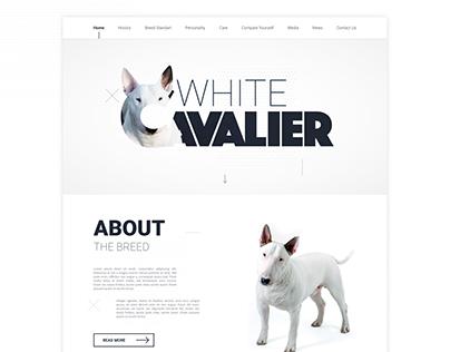 White Cavalier