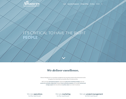 Web Design for am.consulting