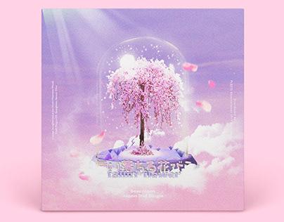 K-Pop Album Recreation (Seventeen Fallin' Flower)