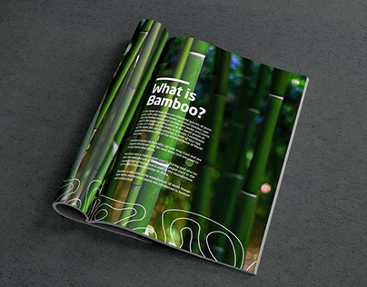 Bamboo Cataloge Final