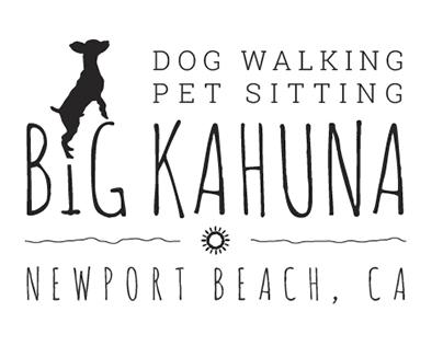Identity and Logo: Big Kahuna Pet Care