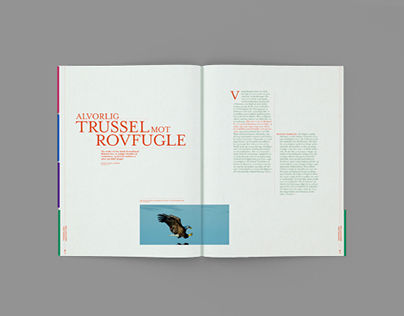 VIDENSKAB.DK - Magazine Design