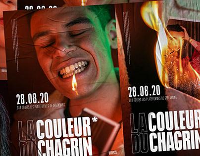 LA COULEUR DU CHAGRIN* - RICO