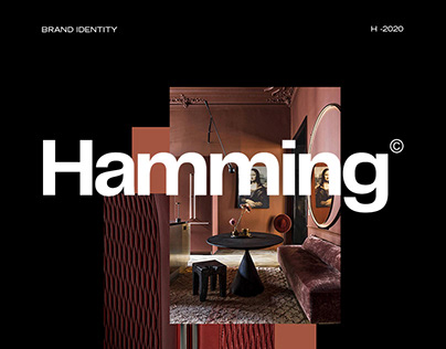 Hamming | Visual Identity