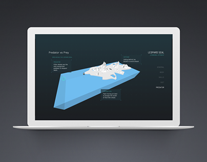 Leopard Seal - Interactive Infographic