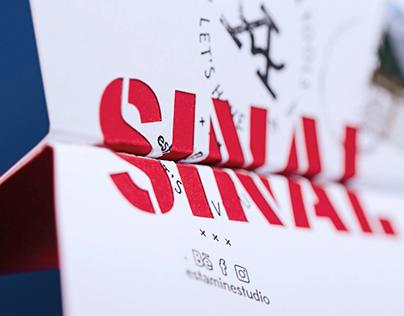 SINAL, a paper plane