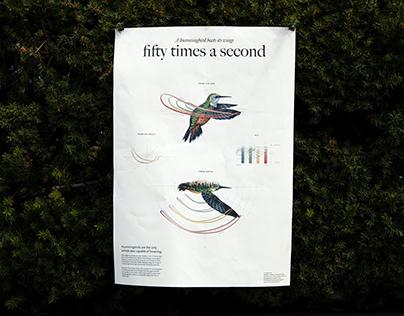 a hummingbird beats its wings
