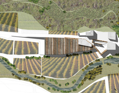 Winery in Requena-San Blas