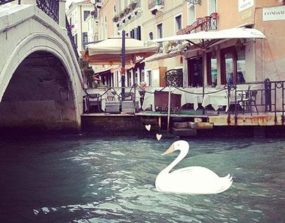 Venice Love
