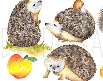 Cute hedgehog clipart