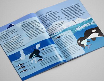 Orca Brochure