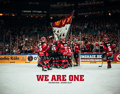 WE ARE ONE - KÖLNER HAIE
