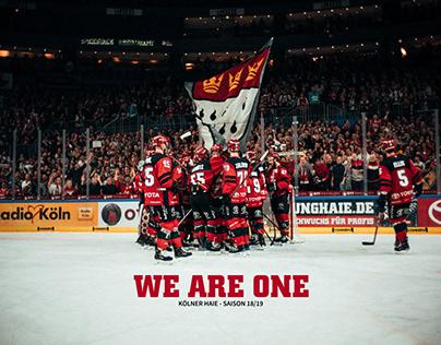 WE ARE ONE - KÖLNER HAIE