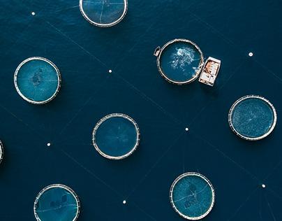 The Aquaculture Series