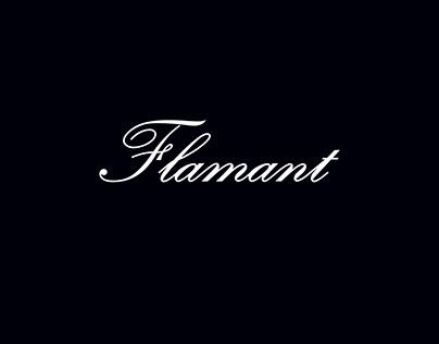 Flamant - Social Media