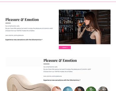 Sillontantrico Website Design