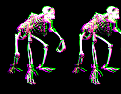 DARWIN Music Video Concept