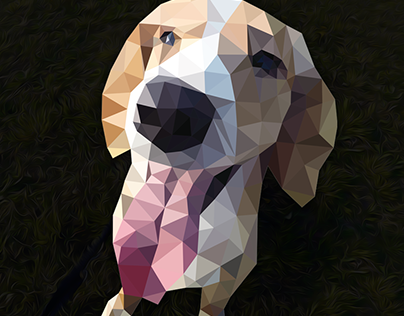 Dog in Polygonal Effect