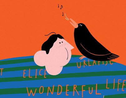 wonderful Isidoro, wonderful life