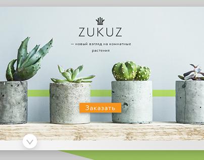 Zukuz LandingPage