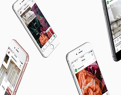 Corporate Branding: sf green clean Instagram