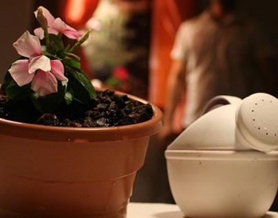 Flower Pots: Enriching Friendships