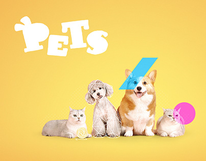 Pets Artwork