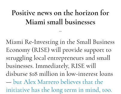 Miami Re-Investing in the Small Business Economy (RISE)