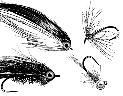 Illustrations for fly tying lessons announcements