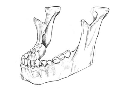 Jawbone Quick Sketch