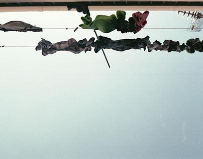 35 mm- Analógico un modo de ver