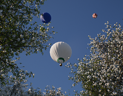 Balloons over Tabebuia Park
