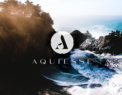 Aquiesse Branding