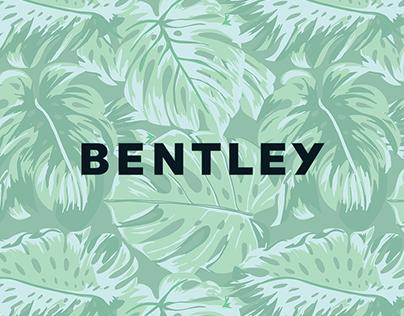 Bentley Spring Break Campaign | Art Direction
