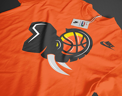 Branding - NBA Africa League Teams (Personal)