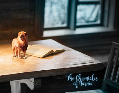 Concept Image - The Chronicles of Narnia