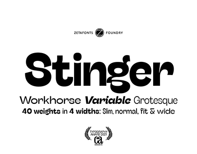 Stinger Typeface - Workhouse, Variable & Grotesque