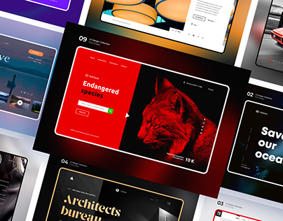 UI Design Collection — First Screen