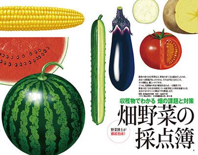 Magazine[Yasai Batik](Vegetable garden)
