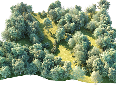 3D foliage test