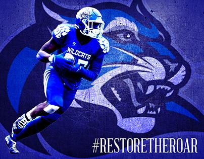 Culver-Stockton College Wildcats Football Internship