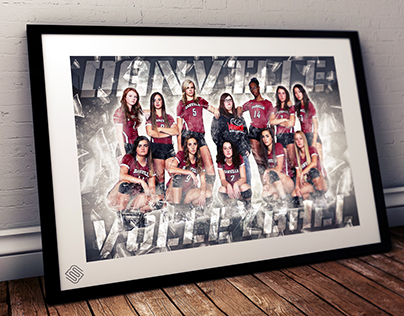 Danville Volleyball Posters