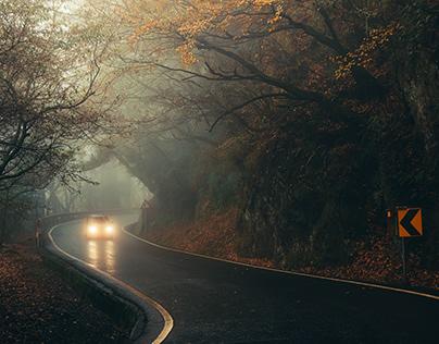 迷霧中的公路 - Road to the fog