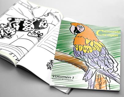 Libro de colorear (coloring book) Coloreando mi región