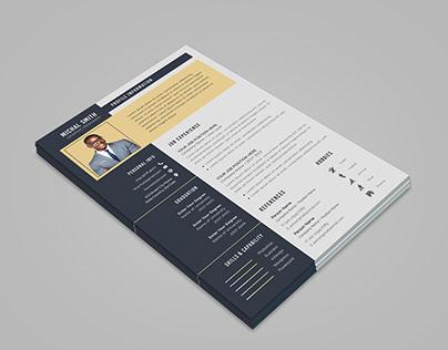 The Resume/CV Professional