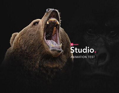 Wildlife Invision Studio Animation